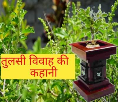तुलसी विवाह की कहानी | Tulsi vivah story in Hindi | तुलसी जी का विवाह कैसे हुवा।